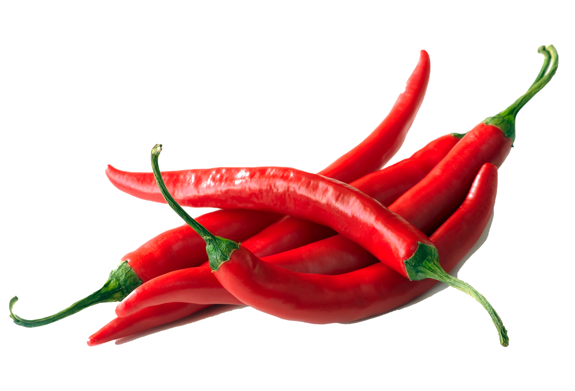 red hot chili pepper on a white background
